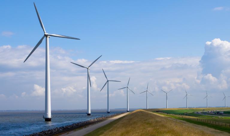 Röportaj: İklim Değişikliği ve Sürdürülebilirlik